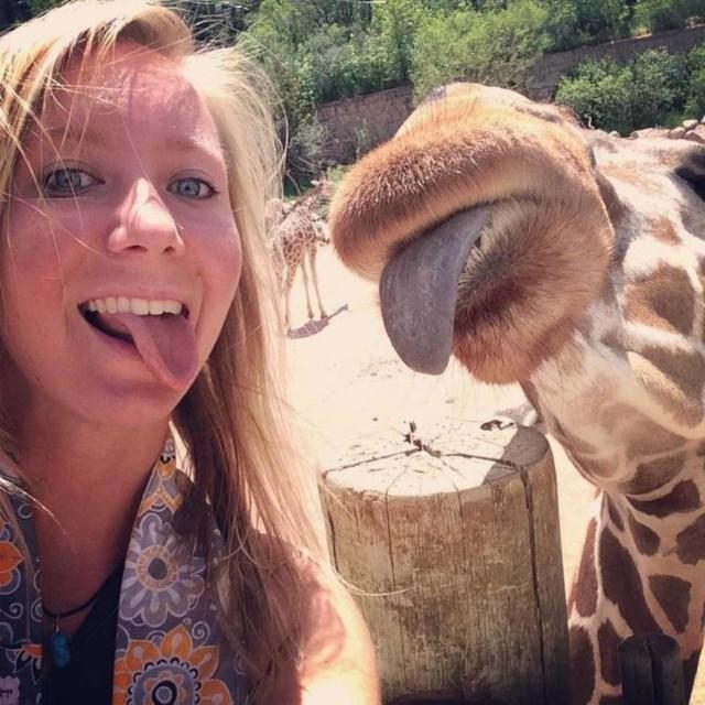 selfies-animais11