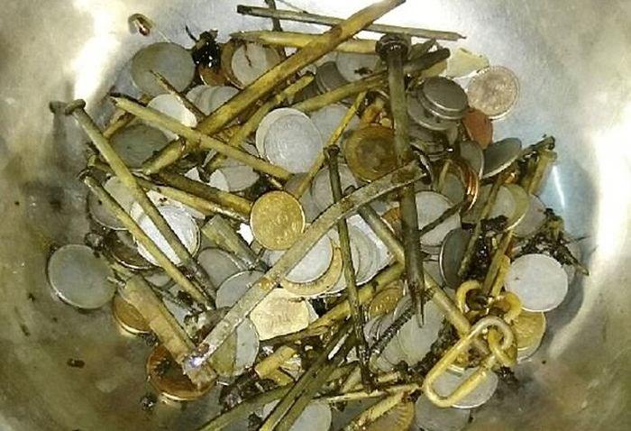 metais-estomago