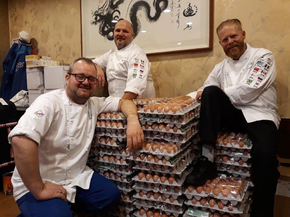 equipe-norueguesa-ovo